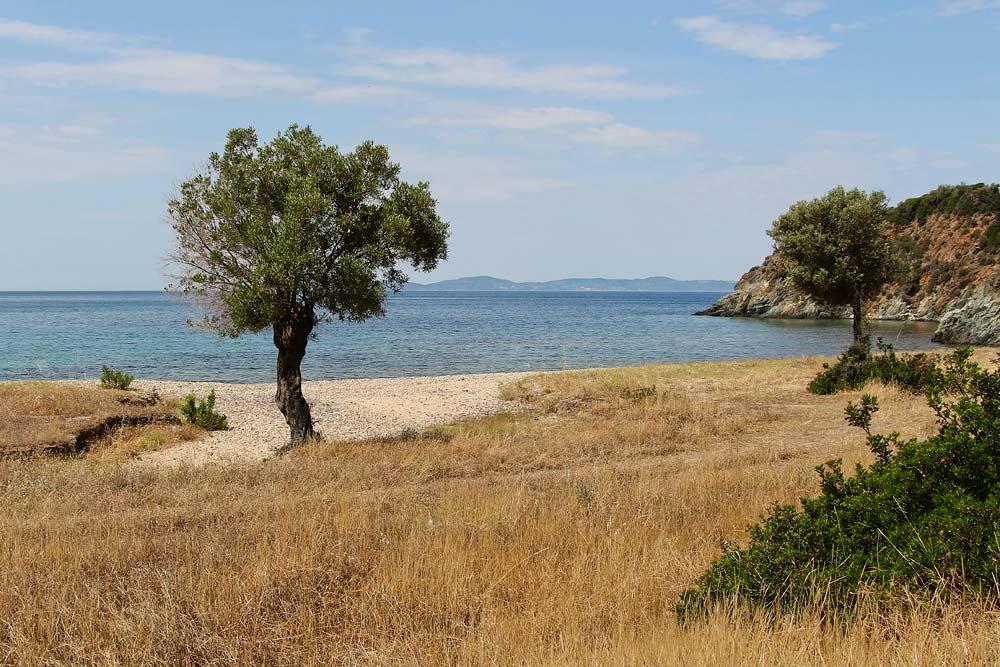 Дикие пляжи Ситонии