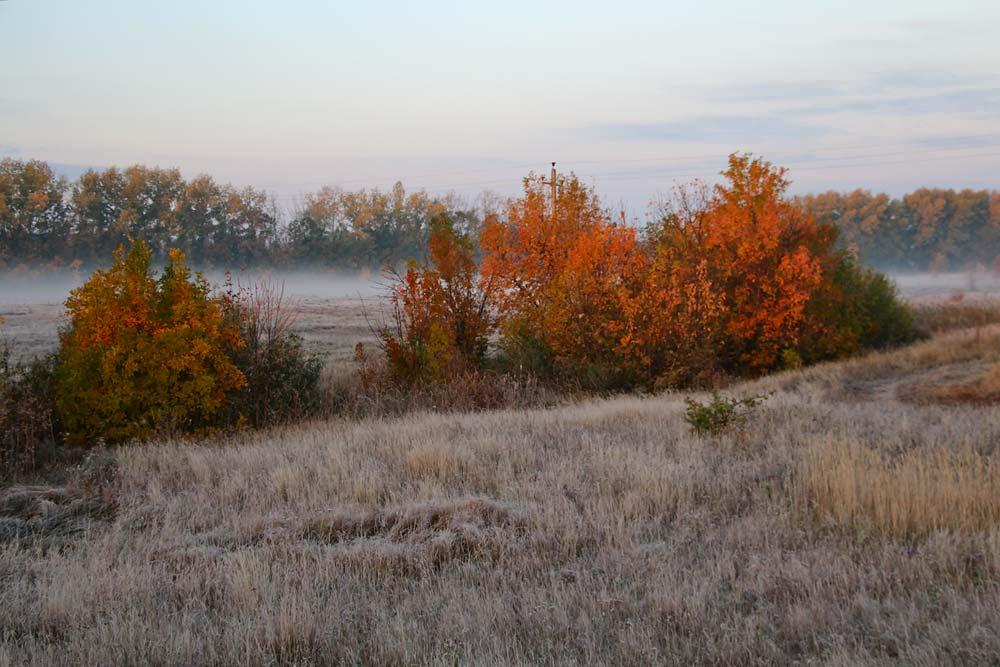 Ранее утро, октябрь