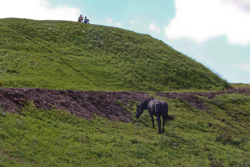 Вороной конь у Красной горы