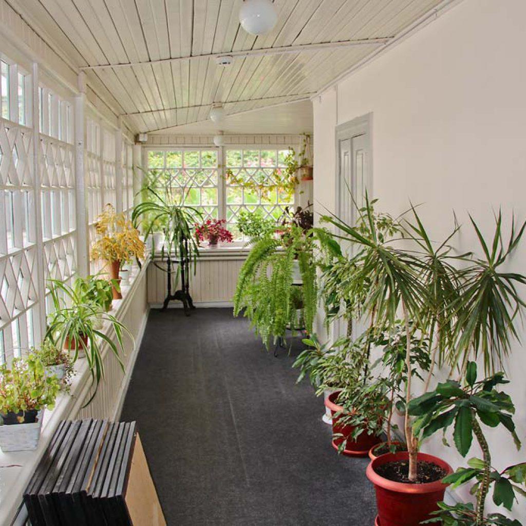 Веранда - зимний сад в доме Алябьева