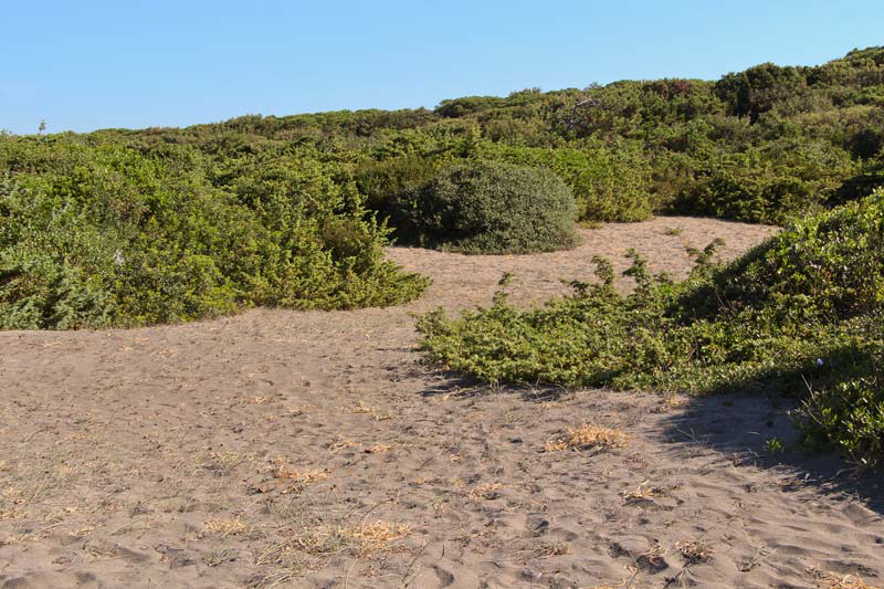 Окрестности пляжа La Serra